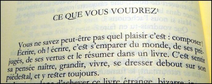 Flaubert Ecrire 15ans