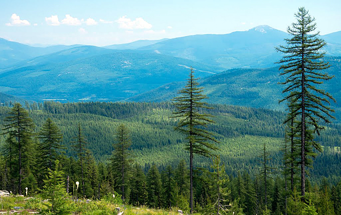 vallee du yaak montana