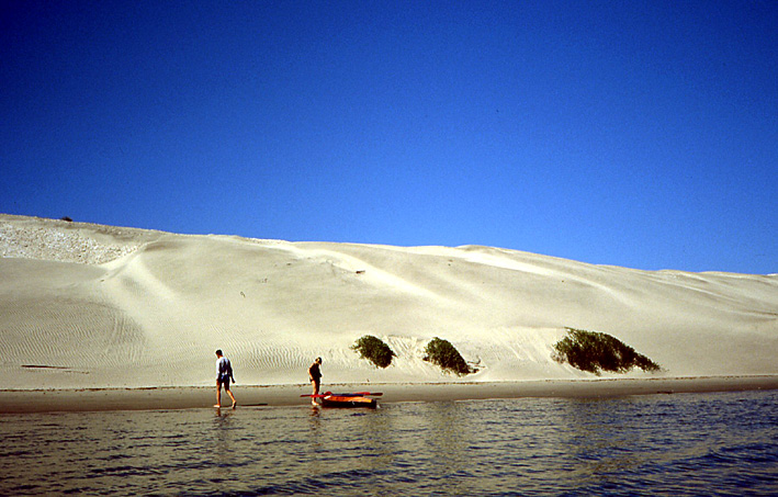 dune pacifique Basse Californie