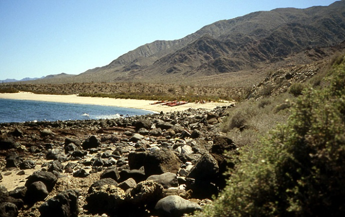 ile deserte mer de cortez Basse Californie