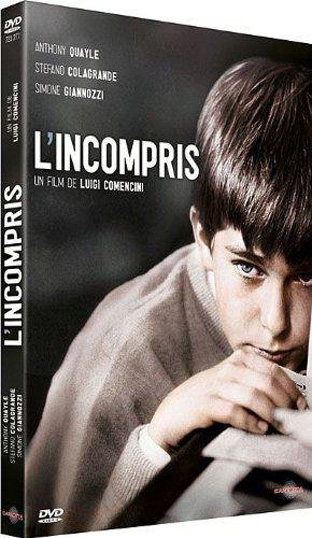 l incompris comencini dvd