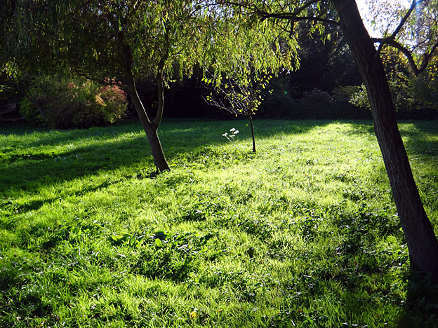 automne-pre-vert