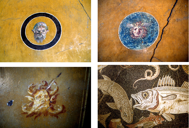 pompei-musee-figures-et-poissons