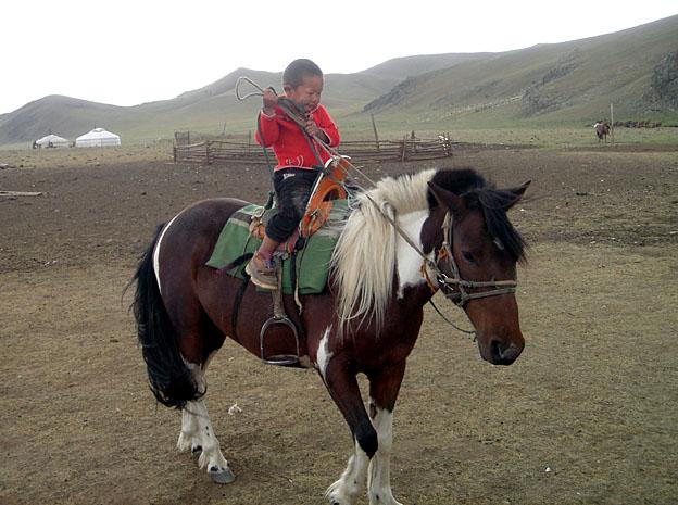 La Mongolie, d'Oulan Bator à l'empire des steppes ; le monde des chevaux 39