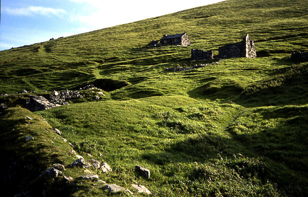 Veuves datant de l'Irlande