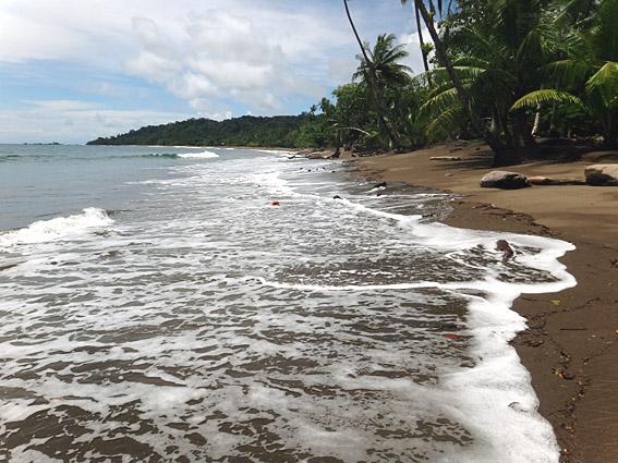 Vitesse de datation Hermosa plage