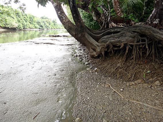 îles Caïmans célibataires datant sites de rencontres et de mariages Indiens